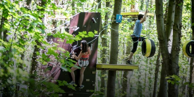 Adventure Group projet forêt