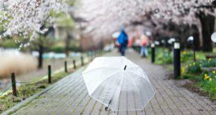 Que faire en cas de pluie
