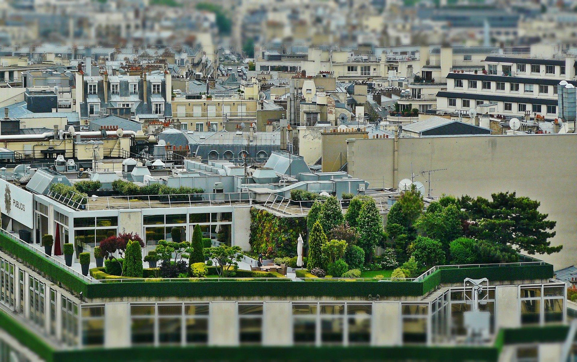 Toits végétalisés à Paris