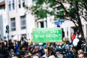 impacts événements 2020 mouvements écologiques/verts
