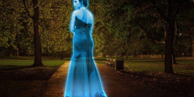 concert hologramme