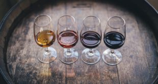 quatre verres de vin pour un team building atelier vin