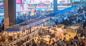 Salon de l'Agriculture écourté : impacts économiques du Coronavirus sur l'événementiel