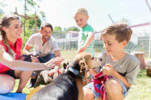 sauvetage d'animaux pendant un événement pet friendly